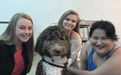 Therapy dog training to serve students