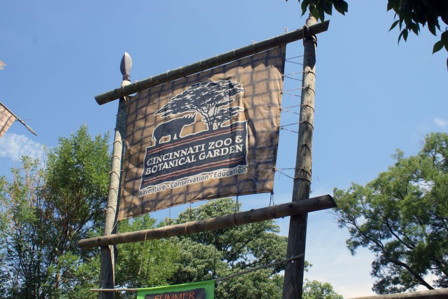 The Cincinnati Zoo is one of several of area locations that could make for a perfect date according to the Rebellion staff.